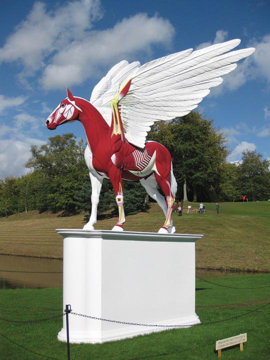 Damien Hirst, image de l'exposition Beyond limits at Chatsworth House