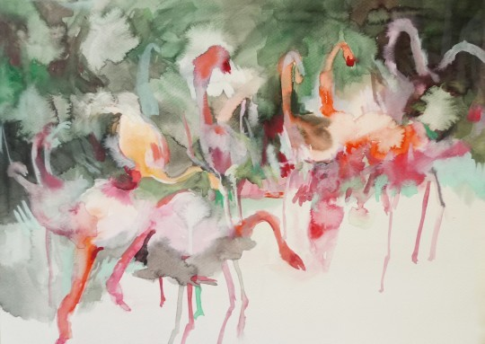 Makiko Furuichi, flamant rose