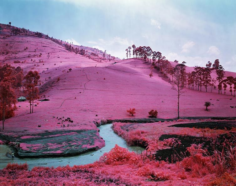 Richard Mosse - Men Of Good Fortune, North Kivu, Eastern Congo, 2011 ©